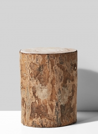 9in Paulownia Wood Tree Trunk