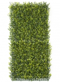 variegated boxwood mat wedding event backdrop
