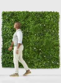 red carpet grass plant step and repeat wall backdrop