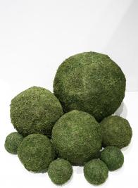 8in Moss Ball