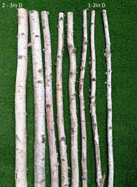 Natural Birch Poles