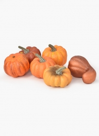 Mini Pumpkins, Set of 6