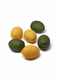 meyers lemon lime fake artificial fruits