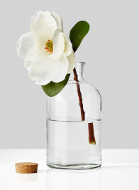 white magnolia in glass bottle vase