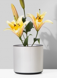 7 1/4in White Linen Ceramic Cylinder Vase