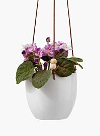 White Ceramic Hanging Pot, 7in