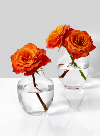 Small Mouth Gold Rim Belly Glass Vase, Set of 2