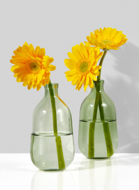 Light Green Bottle Bud Vase, Set of 2
