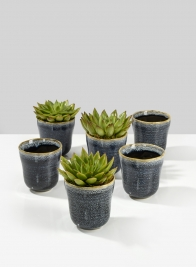 3 1/4in Blue Ceramic Ripple Pot, Set of 6