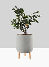 16 1/2in Breakers Grey Ceramic Planter With Wood Legs