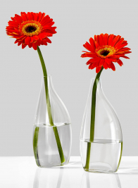 7 3/4in Flat Bottle Vase, Set of 2