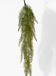 49in Hanging Fern