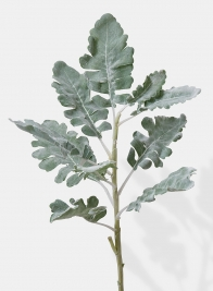 artificial dusty miller leaves pick