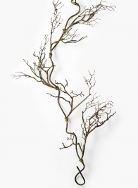 52in Twig Vine
