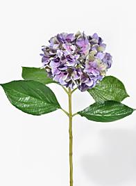 28in Antique Purple Hydrangea