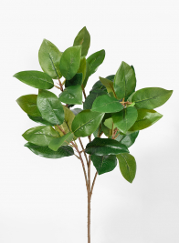 25in Green Magnolia Leaf Spray
