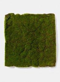 decorative flocked moss square mat