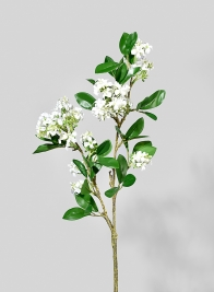 27in White Pear Flower Branch