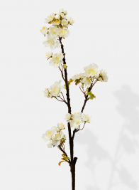 White Quince Spray, 30in