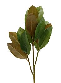 39in Magnolia Leaf Spray