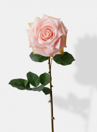 pink artificial rose stem