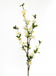 39in Cream Apple Blossom Branch