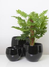 Glossy Black Round Light Fiberstone Pots