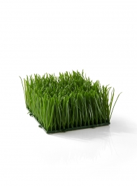 artificial green wheatgrass mat for display props and decor
