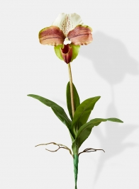 lady slipper orchid silk flowers plant