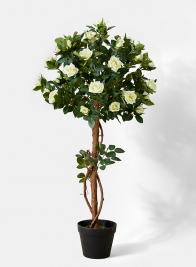 mini white rose topiary plant wedding centerpiece display props