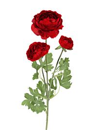 24in Red Ranunculus Spray