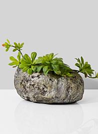 cement rock succulent plant pot