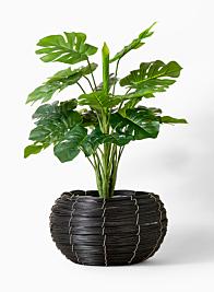 fishbowl shaped wood basket plant cachepot