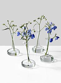 Lampoon Bud Vase, Set of 4