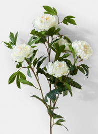 white peonies wedding event floral decor