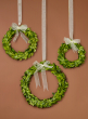 6-, 7 1/2-, and 10-inch Ribboned Boxwood Wreath Set