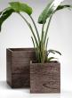 12- & 16-inch Kiri Wood Cube Planters