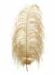 18 - 20in tan ostrich feather HFOH401820