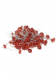 OASIS Lomey 2in Red Diamante Pins, Set of 100