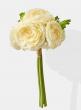 12in Cream Ranunculus Bouquet 24750
