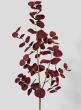 34in Burgundy Eucalyptus Pick