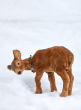 19in Light Brown Deer