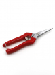 7 1/2in Red Floral Scissors