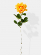 27in Open Orange Pippa Rose