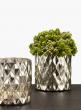 diamond mercury glass vase thistle arrangement