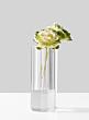 modern-crystal-bud-vase-with-ornamental-cabbage