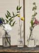6 1/2in Optical Glass Cylinder Bud Vase, Set of 6