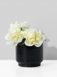 5in Round Black Ceramic Vase
