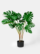 28in Monstera Leaf Plant