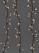 240 Warm White Fairy Lights On Brown Cord